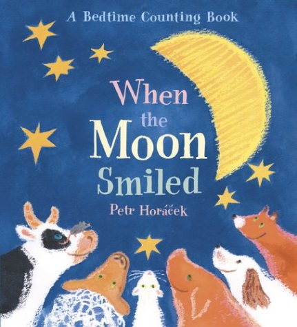 When the Moon Smiled book cover